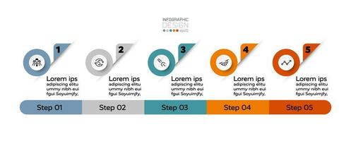 5 steps to show your work, presentation, process, advertisement, education, or business. infographic. vector