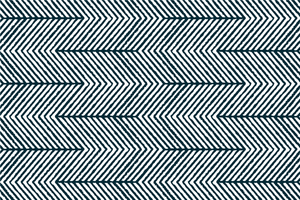 Black and white stripes fabric pattern vector