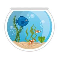 Peces de acuario con agua, algas, mascotas marinas de acuario vector