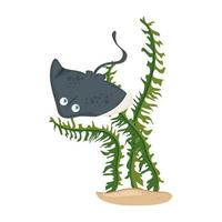sea underwater life, stingray animal with seaweed on white background vector