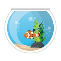 Pez payaso de acuario con agua, algas, mascota marina de acuario vector