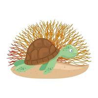 Vida submarina del mar, tortuga con coral sobre fondo blanco. vector
