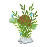 La vida submarina del mar, la tortuga con algas sobre fondo blanco. vector