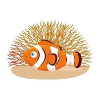 sea underwater life, anemone fish with coral, clownfish on white background vector