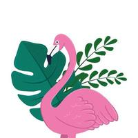 flamingo with tropical leaves on white background vector