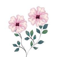 flores de color rosa con ramas y hojas, sobre fondo blanco