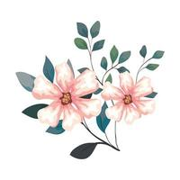 flowers with branches and leaves, on white background vector