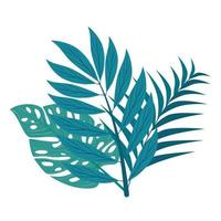 branches with tropical leaves on white background vector