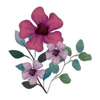 flowers purple and lilac color with branches and leaves, on white background vector