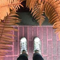 Person Wearing Silver Sneakers In Front Of Brown Ferns