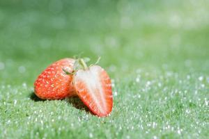 fresa sobre fondo verde