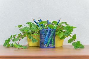 lápices, bolígrafos y flores en el escritorio. foto
