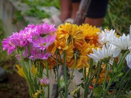 ramo de flores de jardín