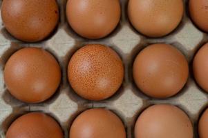 huevos de gallina orgánicos crudos