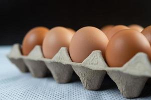 Chicken eggs placed on an egg tray photo