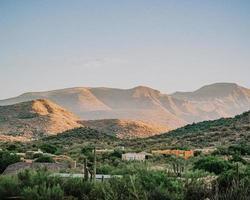 Green trees near brown mountain during daytime photo