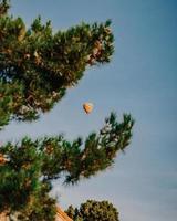 Globo de aire caliente volando sobre pino verde durante el día