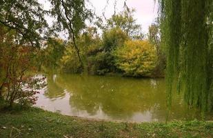 Autumn landscape in a park with lake