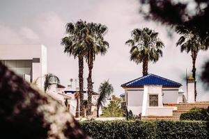 Oriheula, Spain, 2020 - white and blue concrete building near green palm trees during daytime