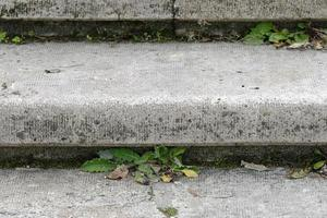 Plants growing between the steps of a stone staircase