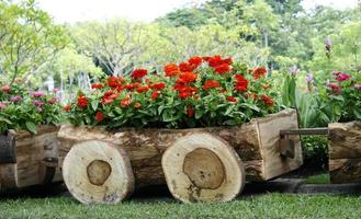 Wooden wagon with flowers photo