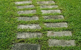 Stone path on green grass in the garden
