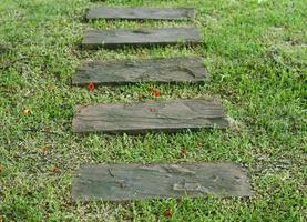 camino de piedra del jardín con césped