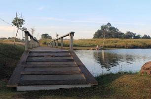 Wood pathway bridge on the lake in national park
