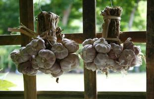 A bunch of garlic hanging