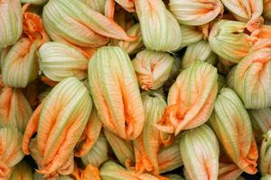 Petals of zucchini flowers.