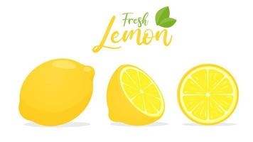 Vector yellow lemon fruit with sour taste for cooking and squeezing to make healthy lemonade