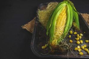 Fresh corn on black background