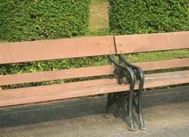 Wooden benches in park photo