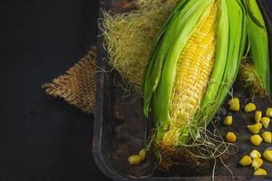 Corn on black background