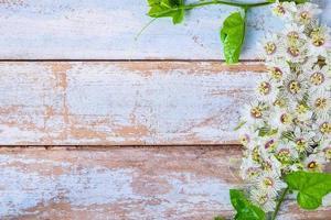 flores en la mesa foto