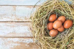 huevos crudos frescos de la granja