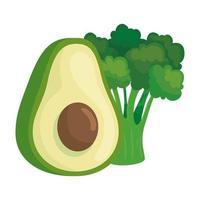 fresh avocado and broccoli vegetables on white background