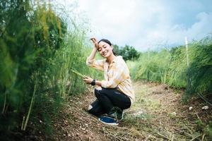 Young pretty farmer harvesting fresh asparagu in the field
