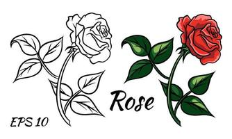 Red rose cartoon style on a white background. vector