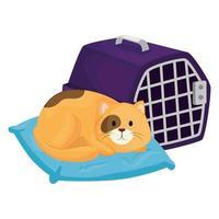 lindo gatito en cojín con caja de transporte vector