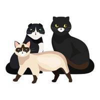 group of cute cats isolated icons vector