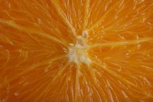 Macro image of ripe orange with small depth of field