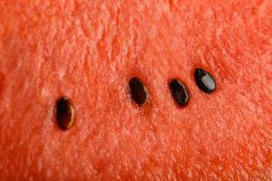Detailed close-up of watermelon background