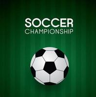 Soccer, football on green field. vector