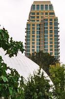 Salt Lake City, UT, 2020 - Green plant near white concrete building during daytime
