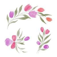 conjunto de arreglo floral de tulipán acuarela vector