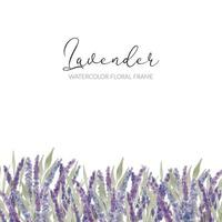 watercolor lavender floral frame