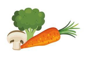 fresh carrot with broccoli and mushroom vector