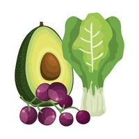 chard leafs with avocado and grapes