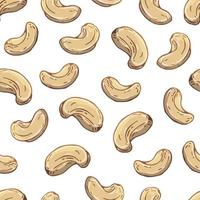 Pattern of vector illustrations on the nutrition theme set of cashews. Realistic isolated objects for your design.